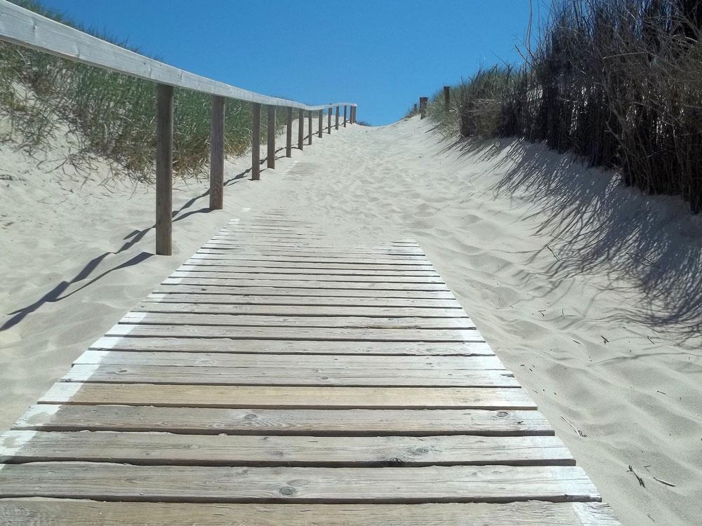Treppe über den Dünen auf Langeoog zum Strand