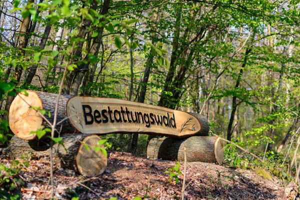 Eingang zum Bestattungswald