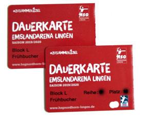 HSG Handball Karten EmslandArena