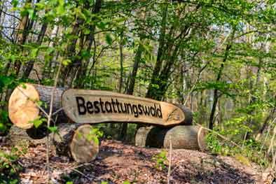 Lingen braucht einen Bestattungswald
