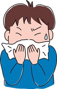 Pollenallergike